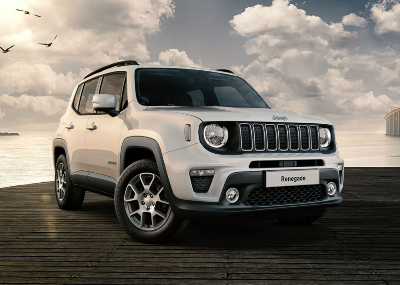 JEEP RENEGADE 1.6 MJT 120 CV LIMITED PACK LED - Spinautomobili